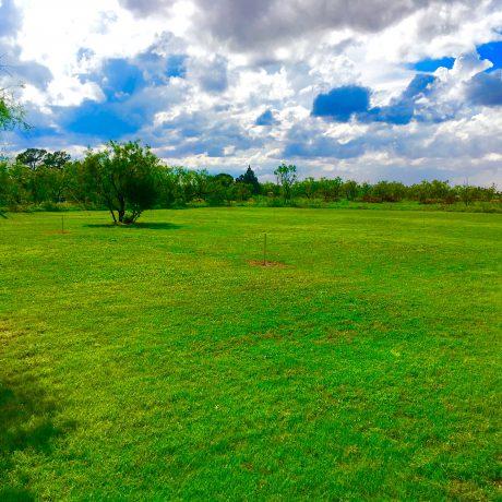 Green Field at West Texas Friendly RV Park